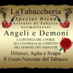 Estratto-Concentrato-Angeli-e-Demoni