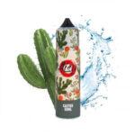 aisu cactus 2